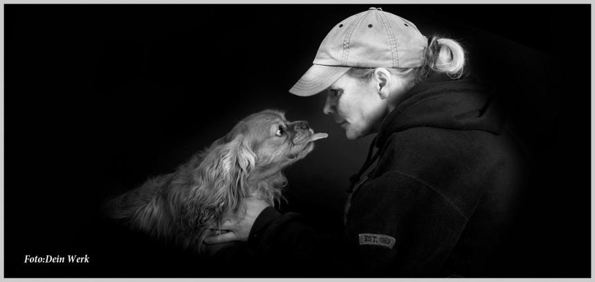 Hundeschule in Essen, Dein Werk, Magazin für Macher